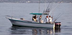 puerto vallarta bay fishing